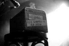 redsnapper-9779